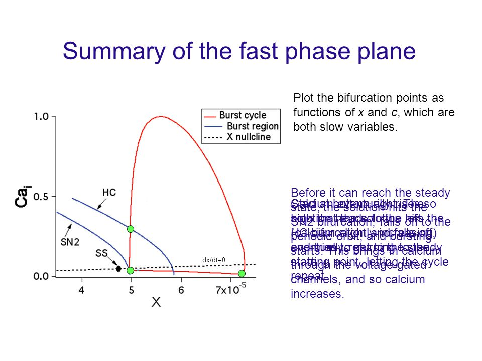 Summary of the fast phase plane Plot the bifurcation points as functions of x and c, which are both slow variables.