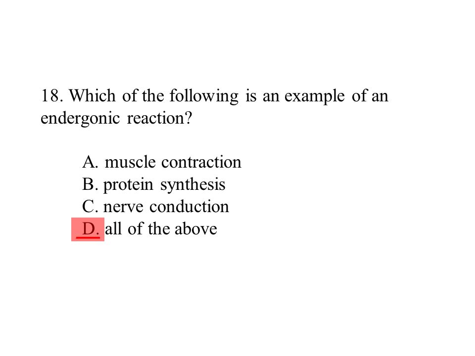 18. Which of the following is an example of an endergonic reaction? A. muscle contraction B. protein synthesis C. nerve conduction D. all of the above