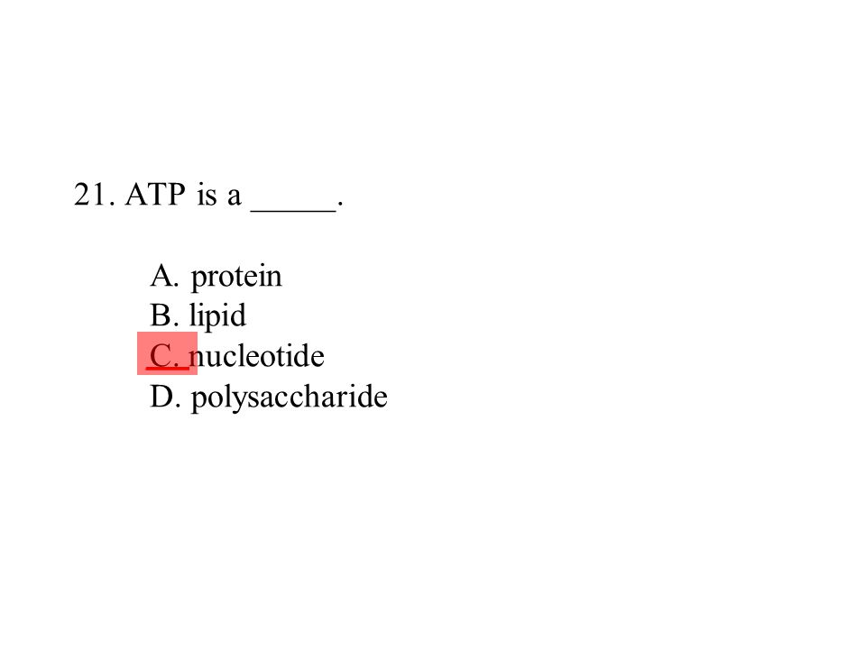21. ATP is a _____. A. protein B. lipid C. nucleotide D. polysaccharide ___