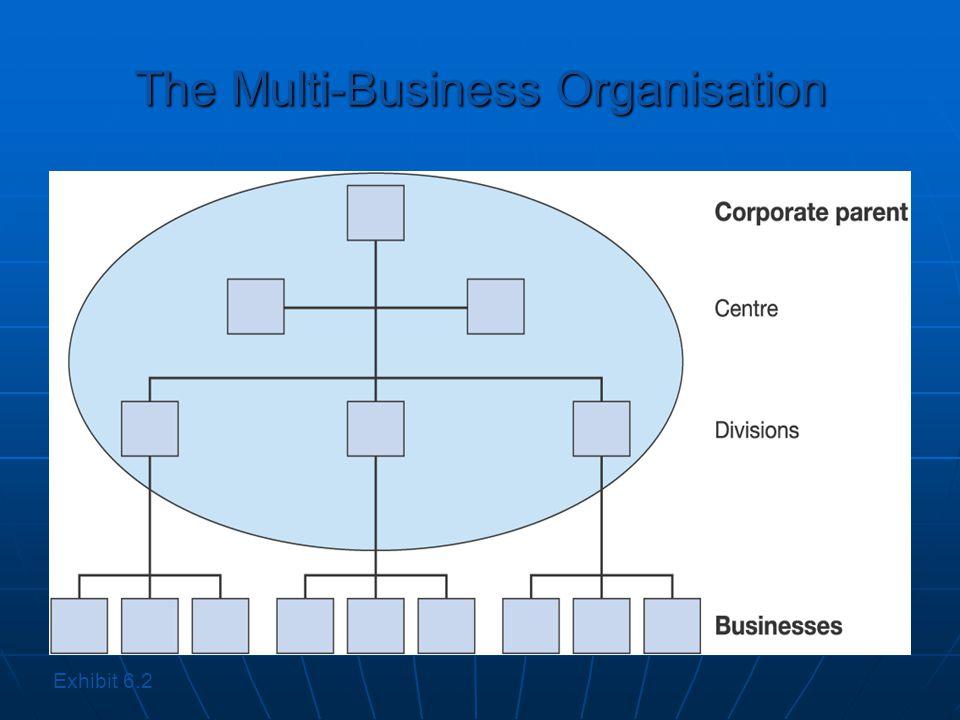 The Multi-Business Organisation Exhibit 6.2
