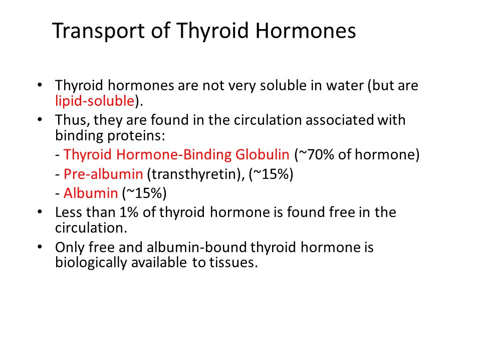 Transport of Thyroid Hormones Thyroid hormones are not very soluble in water (but are lipid-soluble). Thus, they are found in the circulation associat