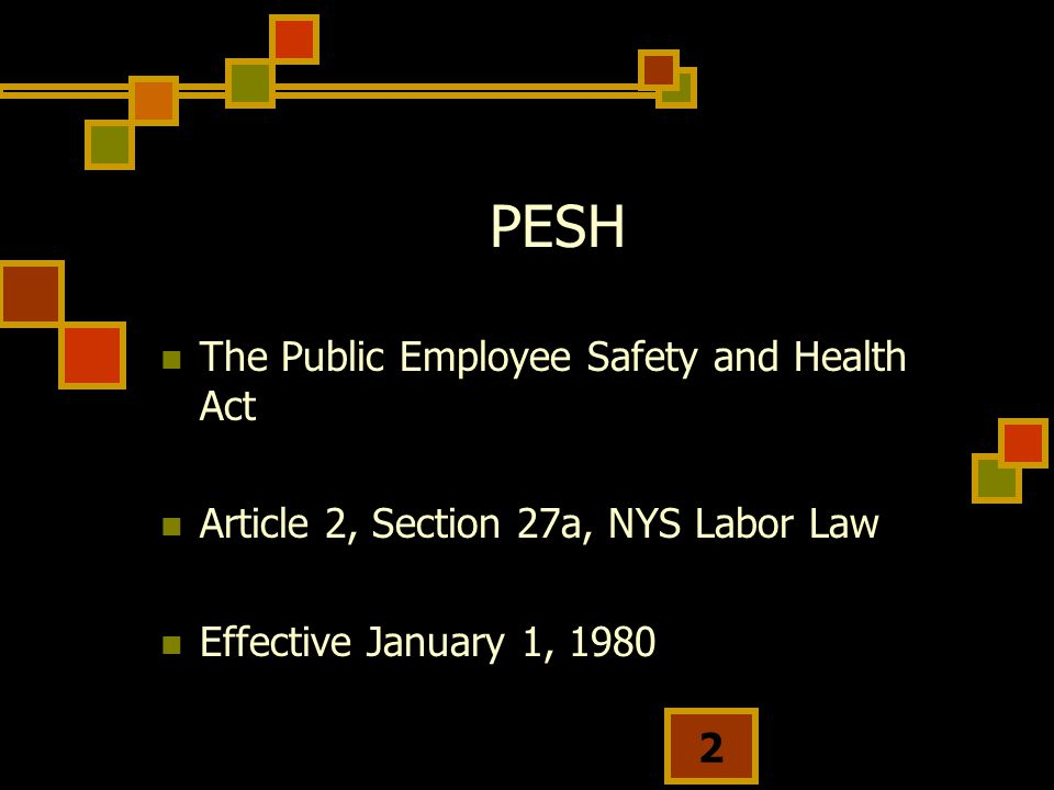 2 PESH The Public Employee Safety and Health Act Article 2, Section 27a, NYS Labor Law Effective January 1, 1980