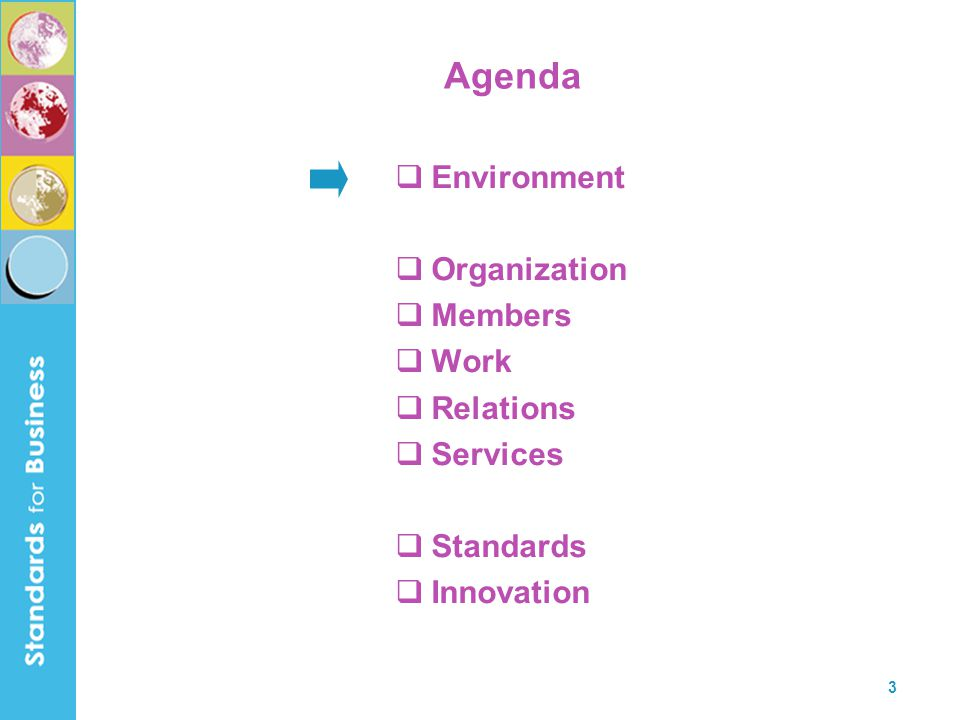 3 Agenda  Environment  Organization  Members  Work  Relations  Services  Standards  Innovation