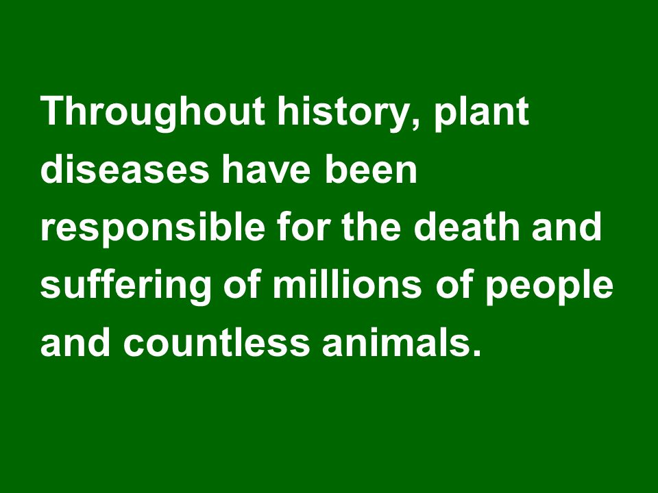Throughout history, plant diseases have been responsible for the death and suffering of millions of people and countless animals.