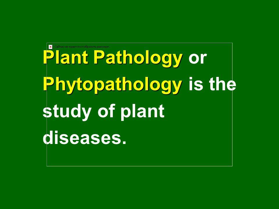 Plant Pathology Plant Pathology or Phytopathology Phytopathology is the study of plant diseases.