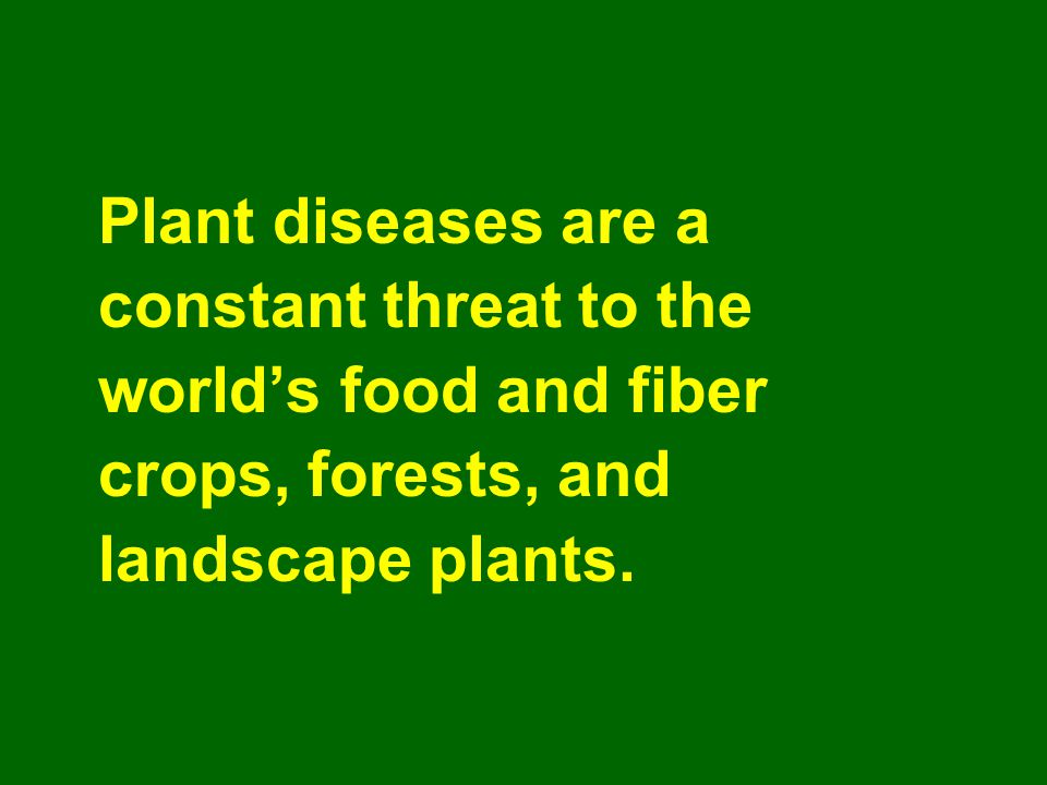 Plant diseases are a constant threat to the world's food and fiber crops, forests, and landscape plants.