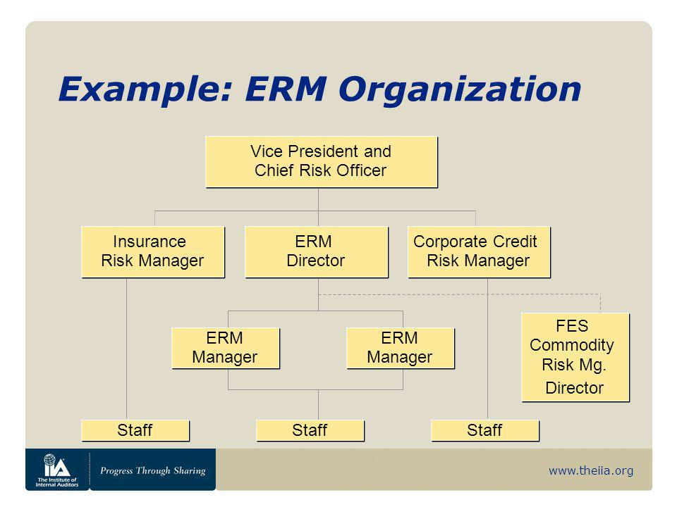 www.theiia.org Example: ERM Organization ERM Director Vice President and Chief Risk Officer Corporate Credit Risk Manager Insurance Risk Manager ERM M