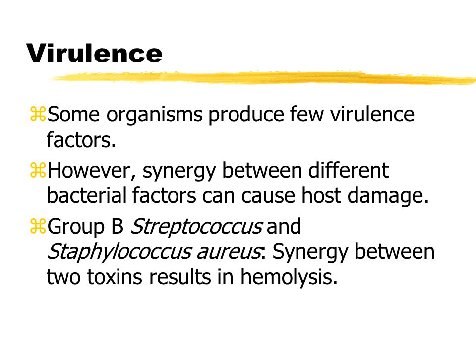 Virulence zSome organisms produce few virulence factors. zHowever, synergy between different bacterial factors can cause host damage. zGroup B Strepto