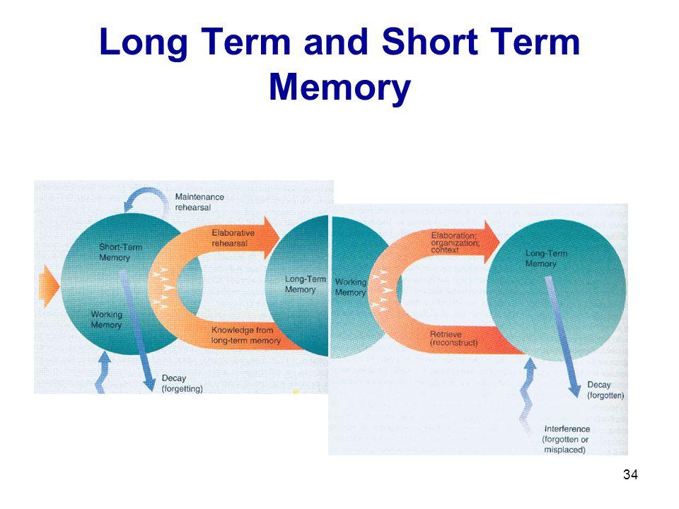 34 Long Term and Short Term Memory