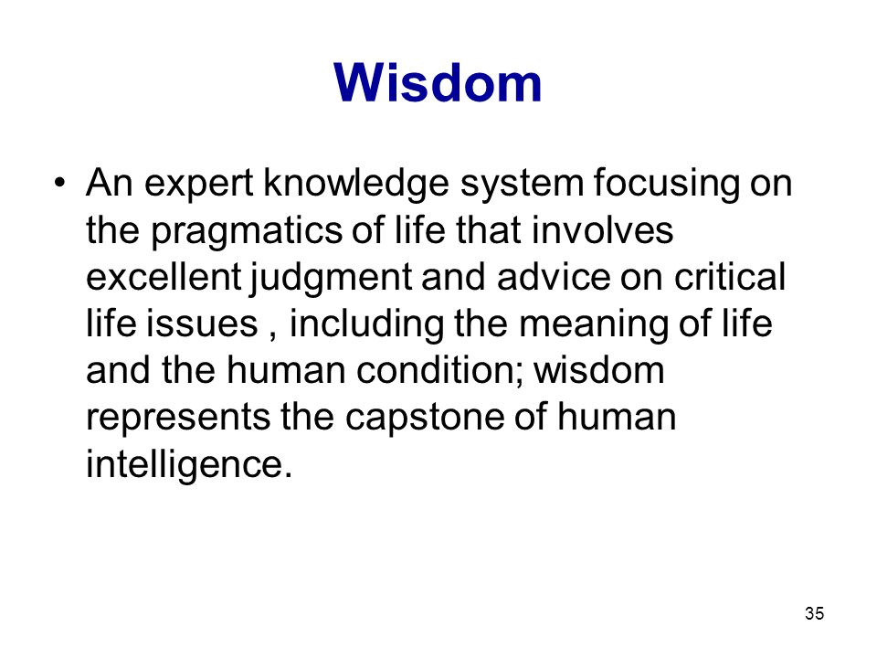 35 Wisdom An expert knowledge system focusing on the pragmatics of life that involves excellent judgment and advice on critical life issues, including