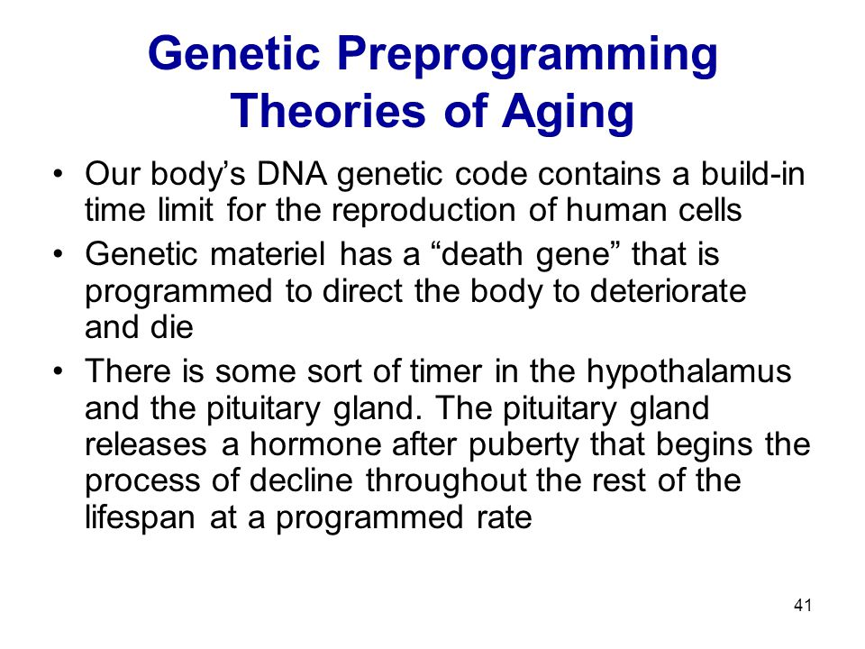 41 Genetic Preprogramming Theories of Aging Our body's DNA genetic code contains a build-in time limit for the reproduction of human cells Genetic mat