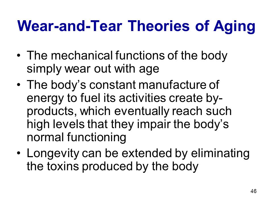 46 Wear-and-Tear Theories of Aging The mechanical functions of the body simply wear out with age The body's constant manufacture of energy to fuel its