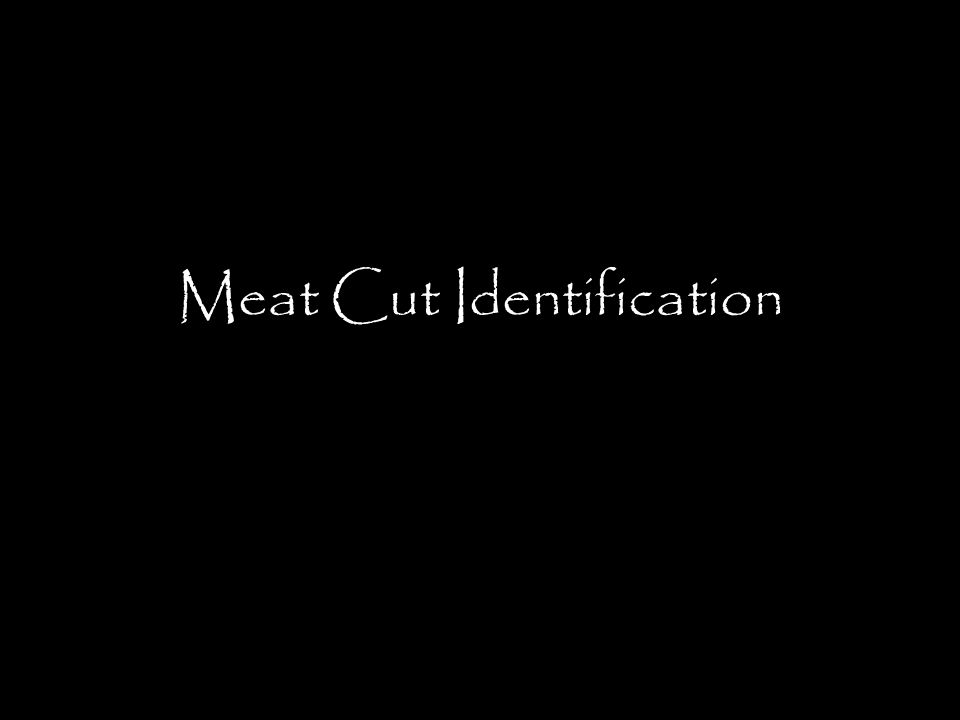 Pork Rib Chop This steak contains a rib and portion of the backbone.