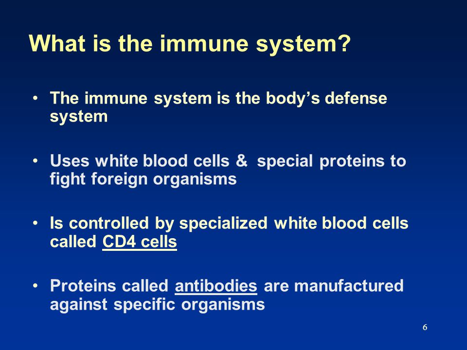 6 What is the immune system.