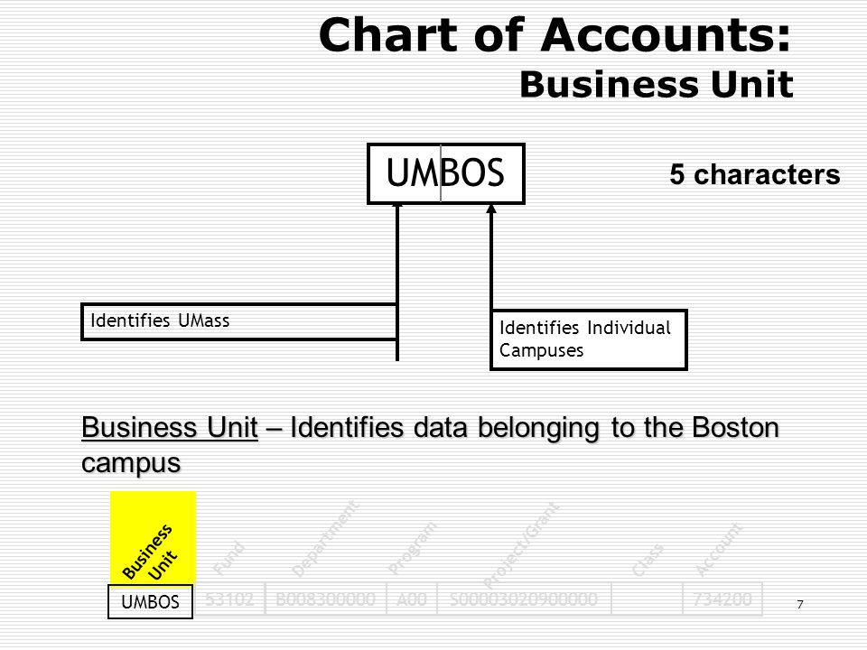 Identifies UMassIdentifies Individual Campuses 53102B008300000A00S00003020900000734200 Business Unit Fund Department Program Project/Grant Class Account UMBOS Chart of Accounts: Business Unit 5 characters Business Unit – Identifies data belonging to the Boston campus UMBOS 7