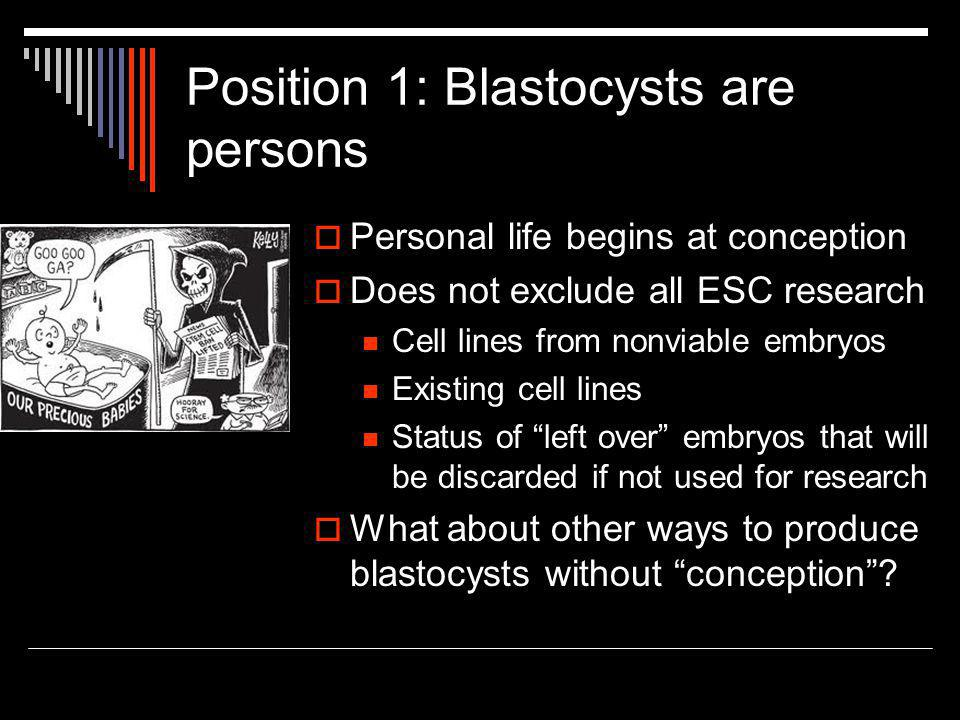 Position 1: Blastocysts are persons  Personal life begins at conception  Does not exclude all ESC research Cell lines from nonviable embryos Existing cell lines Status of left over embryos that will be discarded if not used for research  What about other ways to produce blastocysts without conception