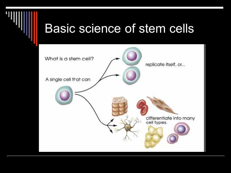 Basic science of stem cells