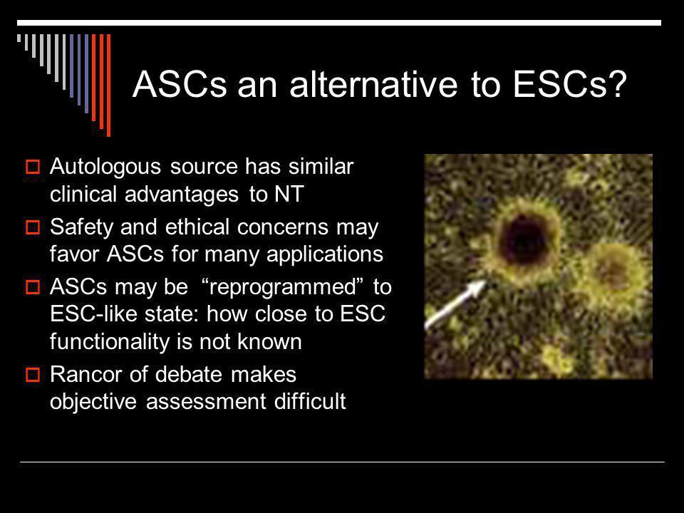 ASCs an alternative to ESCs.
