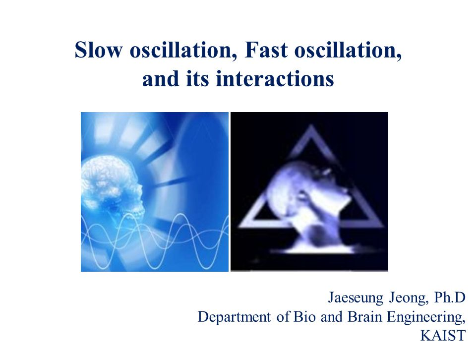 Brain oscillations The brain is constantly active, even during deep sleep.