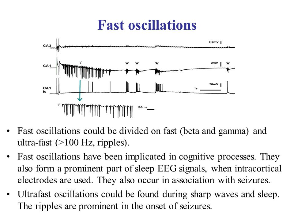 Fast oscillations Fast oscillations could be divided on fast (beta and gamma) and ultra-fast (>100 Hz, ripples). Fast oscillations have been implicate