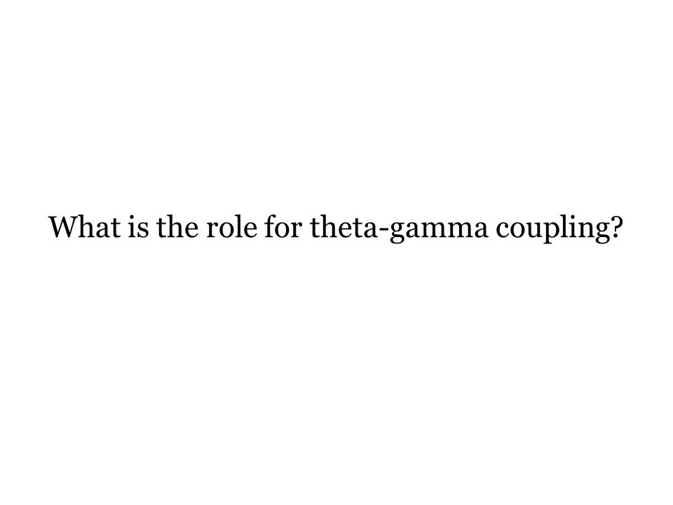 What is the role for theta-gamma coupling?