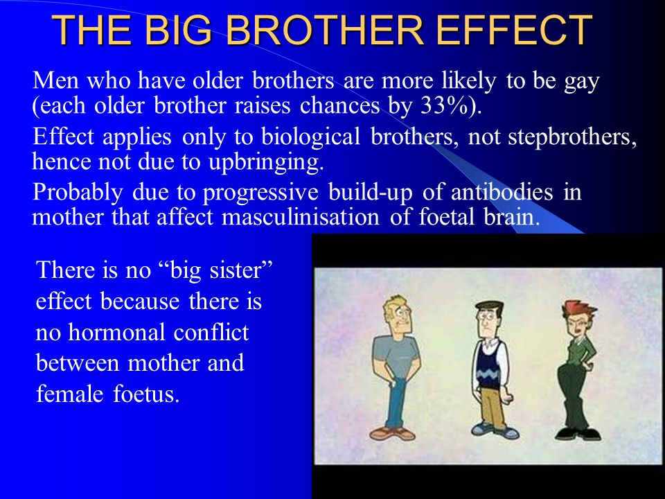 THE BIG BROTHER EFFECT Men who have older brothers are more likely to be gay (each older brother raises chances by 33%). Effect applies only to biolog