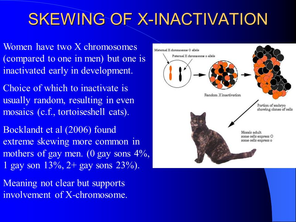SKEWING OF X-INACTIVATION Women have two X chromosomes (compared to one in men) but one is inactivated early in development. Choice of which to inacti
