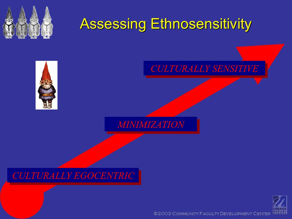 ©2003 Community Faculty Development Center CULTURALLY SENSITIVE Assessing Ethnosensitivity CULTURALLY EGOCENTRIC MINIMIZATION
