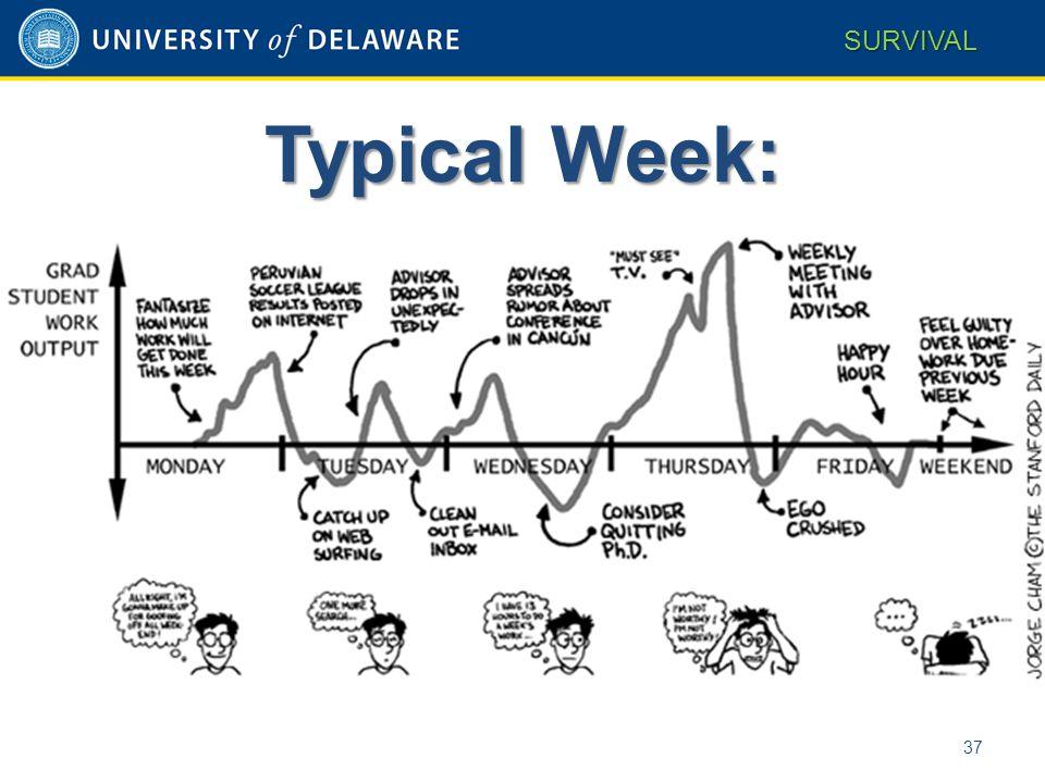 Typical Week: 37 SURVIVAL