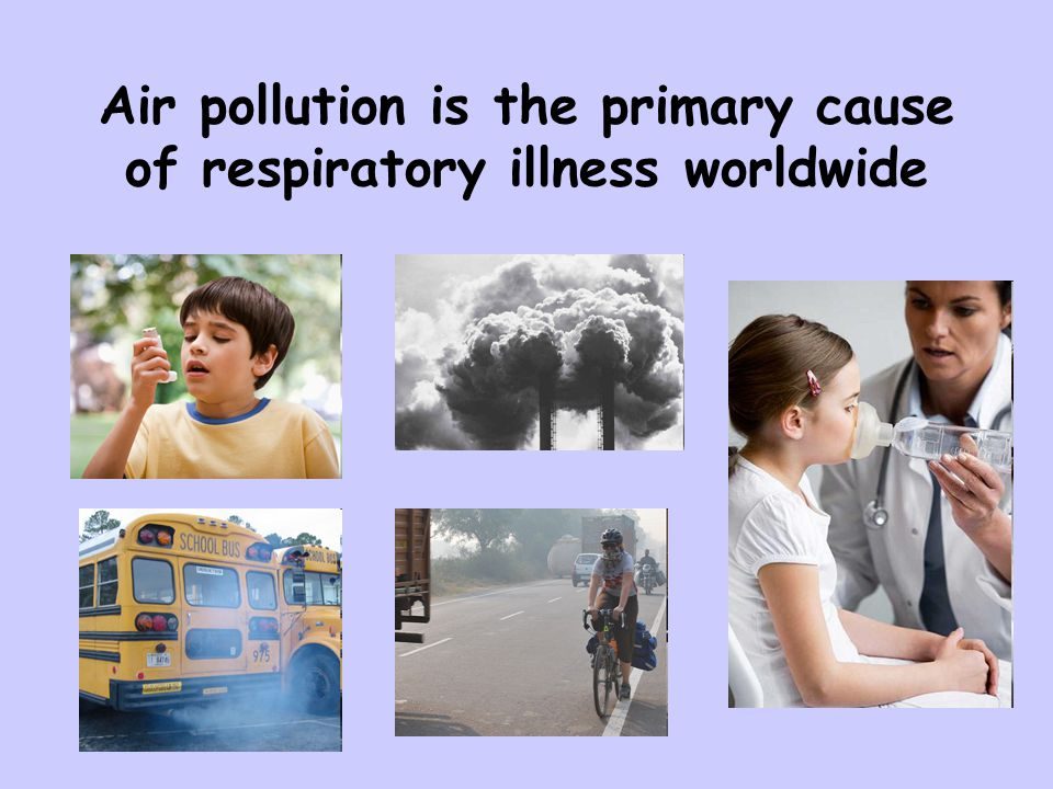 Clean Air Act Created in 1970 – Amendments added in 1977 & 1990 National Ambient Air Quality Standards –Primary standards set limits to protect public health –Secondary standards set limits to protect public welfare, including protection against decreased visibility, damage to animals, crops, vegetation, and buildings