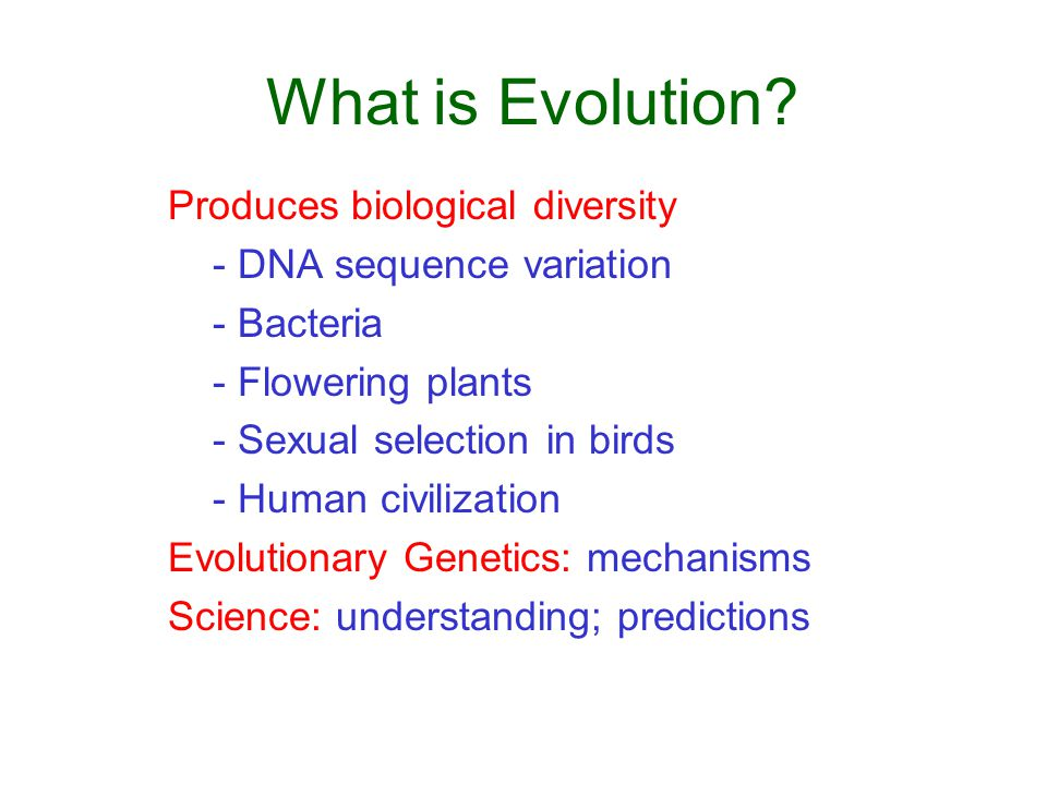 What is Evolution.