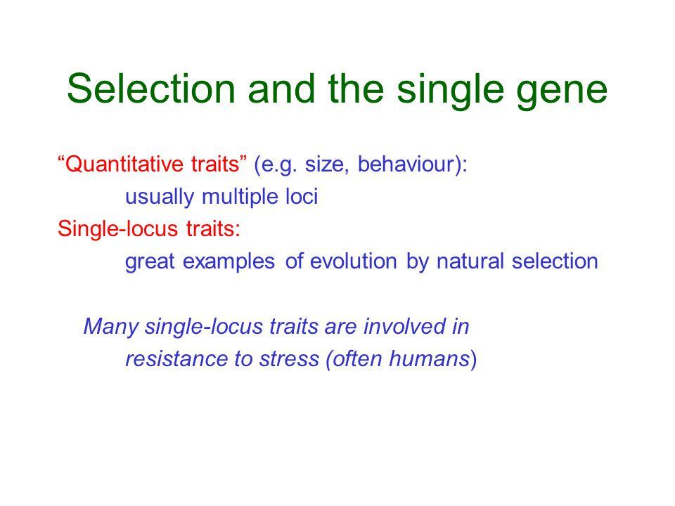 Selection and the single gene Quantitative traits (e.g.