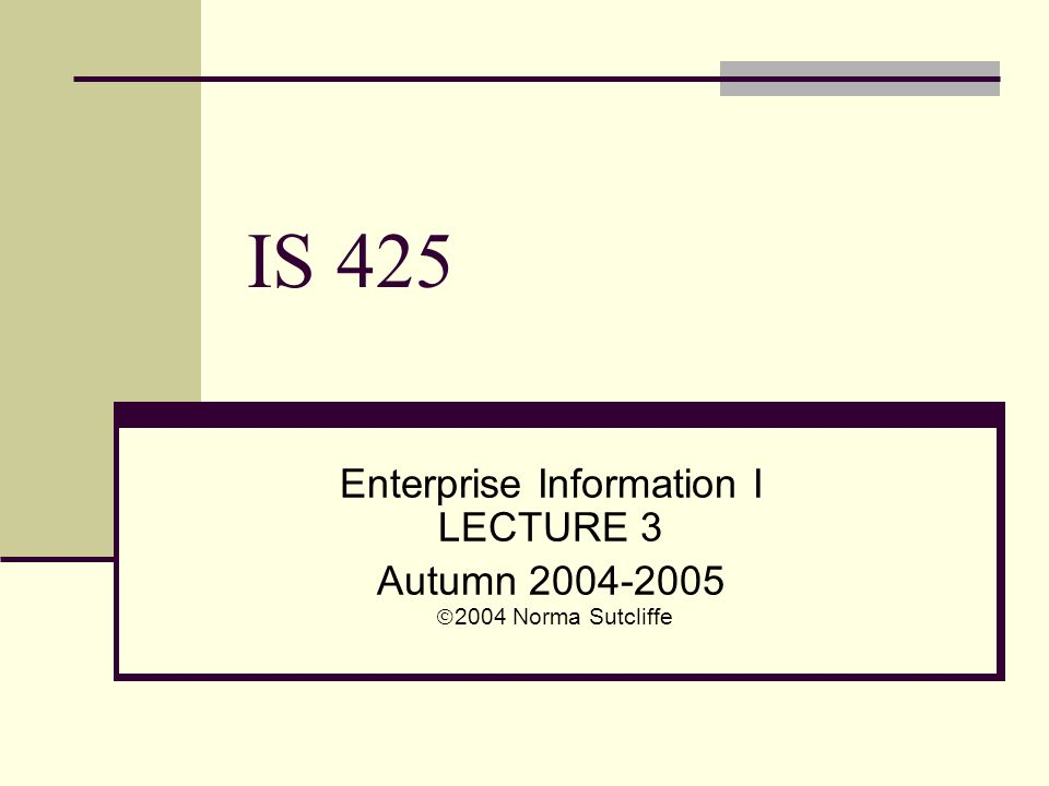 IS 425 Enterprise Information I LECTURE 3 Autumn 2004-2005  2004 Norma Sutcliffe