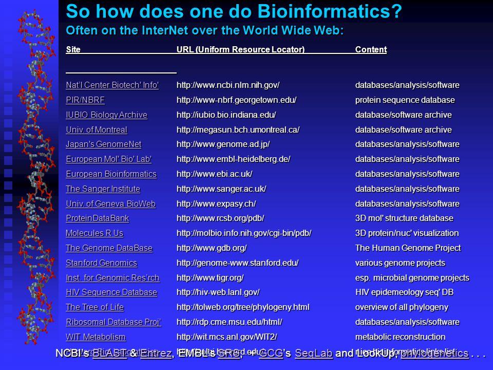So how does one do Bioinformatics.