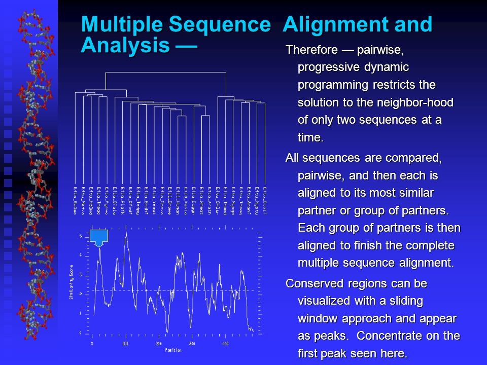 Multiple Sequence Alignment and Analysis — Therefore — pairwise, progressive dynamic programming restricts the solution to the neighbor-hood of only two sequences at a time.