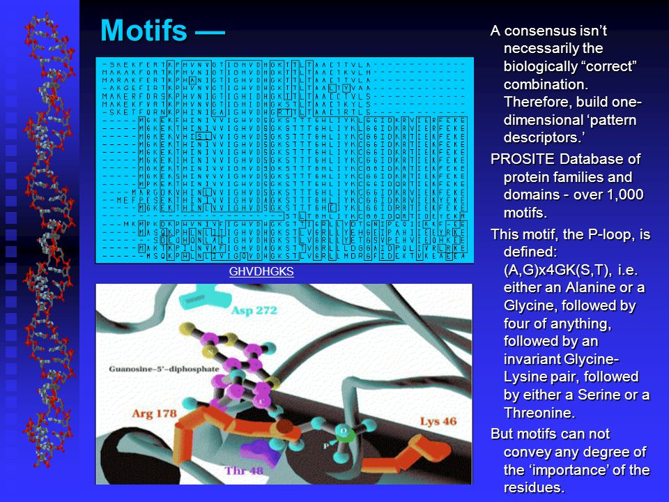 Motifs — GHVDHGKS A consensus isn't necessarily the biologically correct combination.