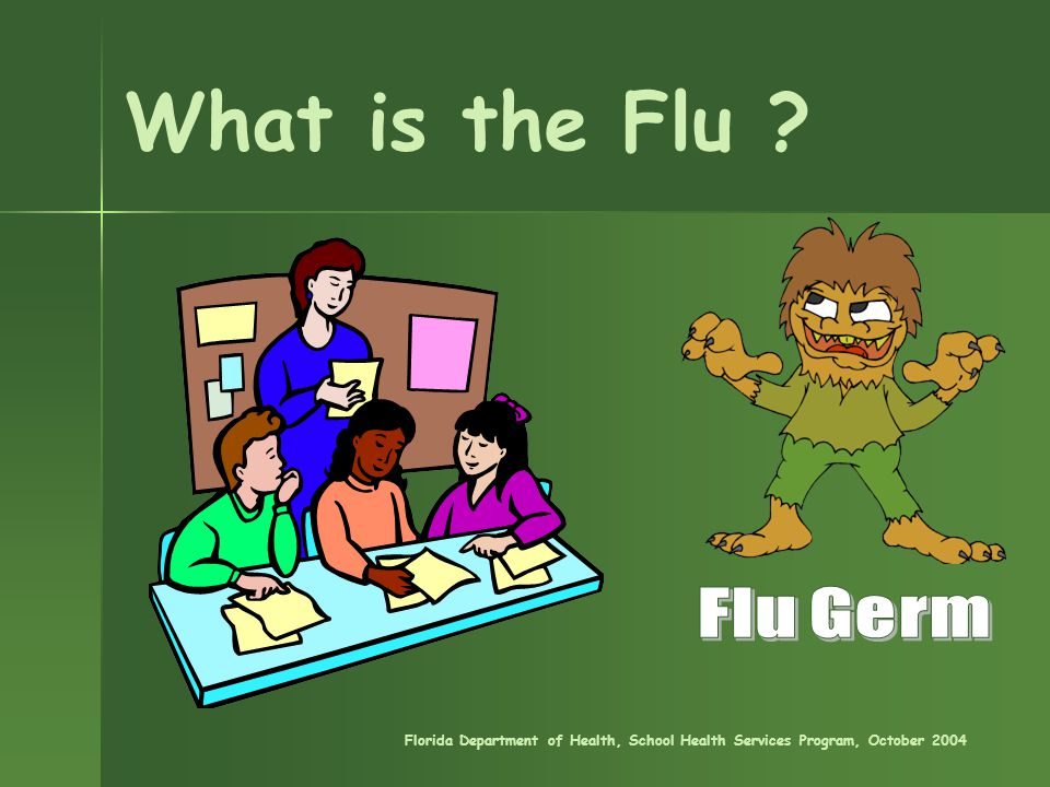 What is the Flu Florida Department of Health, School Health Services Program, October 2004