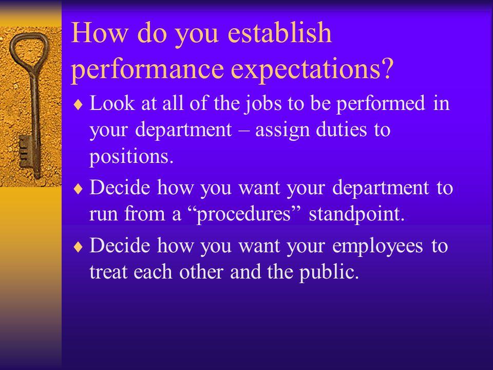 How do you establish performance expectations.