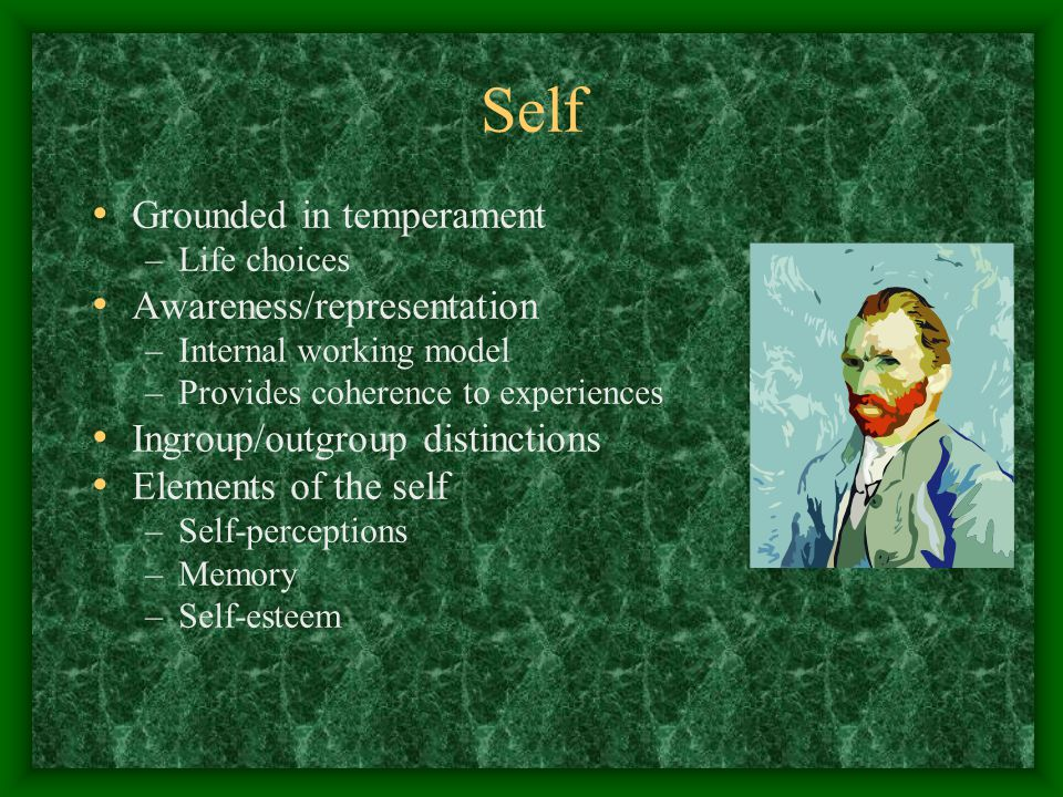 Self Grounded in temperament –Life choices Awareness/representation –Internal working model –Provides coherence to experiences Ingroup/outgroup distinctions Elements of the self –Self-perceptions –Memory –Self-esteem