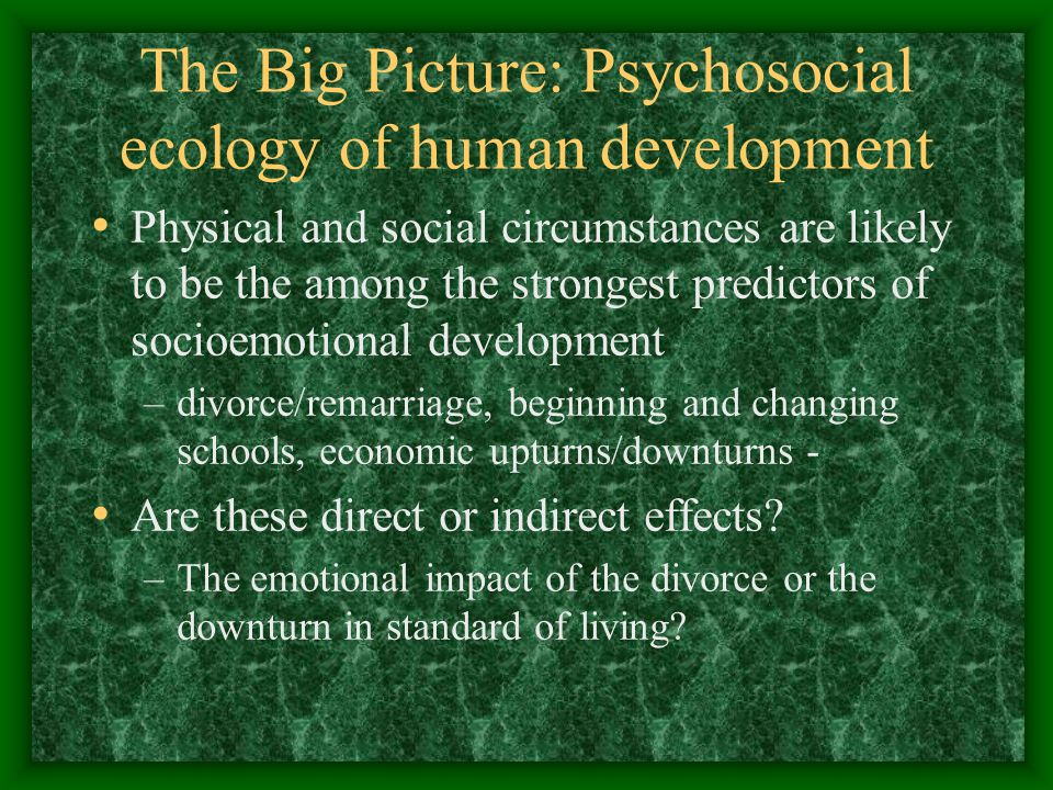 The Big Picture: Psychosocial ecology of human development Physical and social circumstances are likely to be the among the strongest predictors of socioemotional development –divorce/remarriage, beginning and changing schools, economic upturns/downturns - Are these direct or indirect effects.