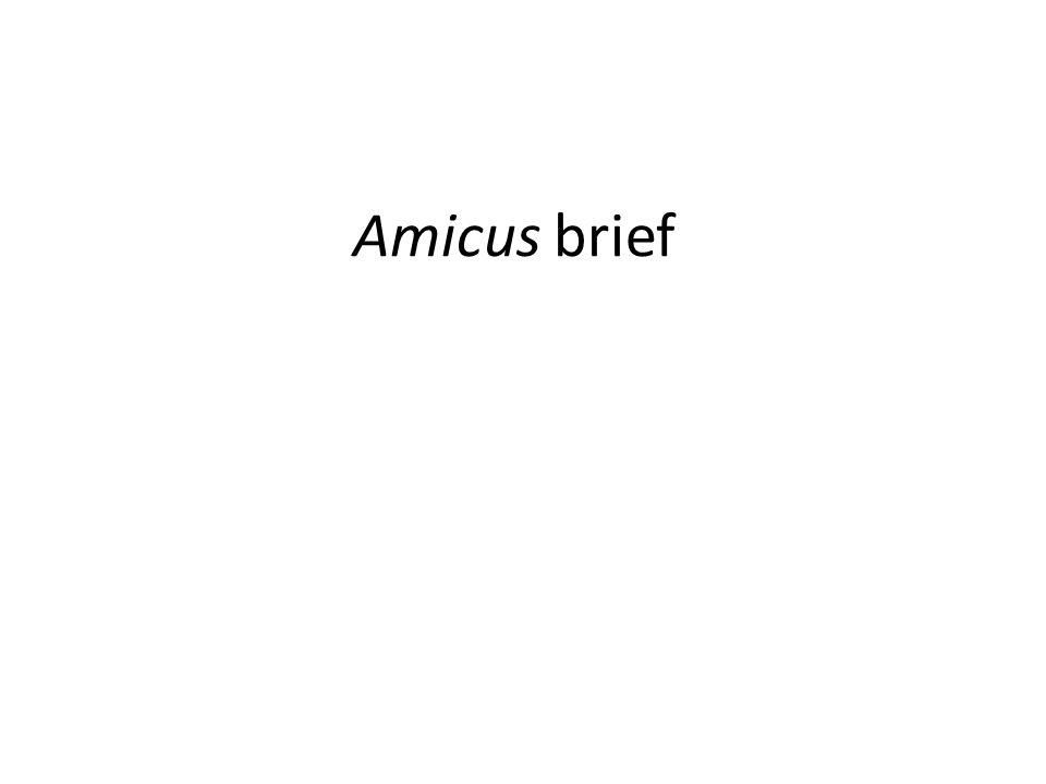 Amicus brief