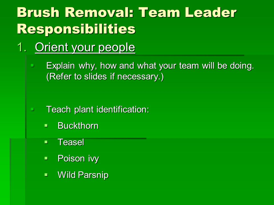 Brush Removal: Team Leader Responsibilities 1.Orient your people  Explain why, how and what your team will be doing.