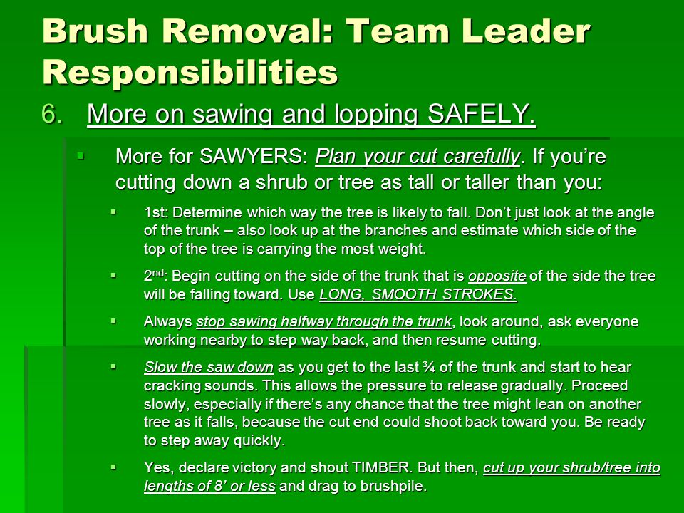 Brush Removal: Team Leader Responsibilities 6.More on sawing and lopping SAFELY.
