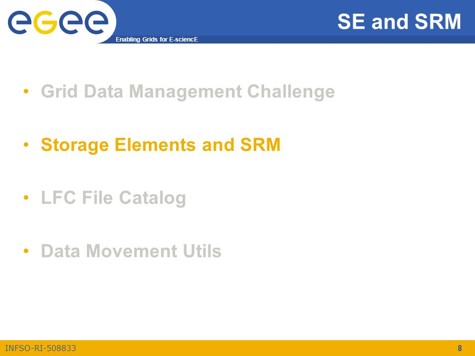 Enabling Grids for E-sciencE INFSO-RI-508833 8 SE and SRM Grid Data Management Challenge Storage Elements and SRM LFC File Catalog Data Movement Utils