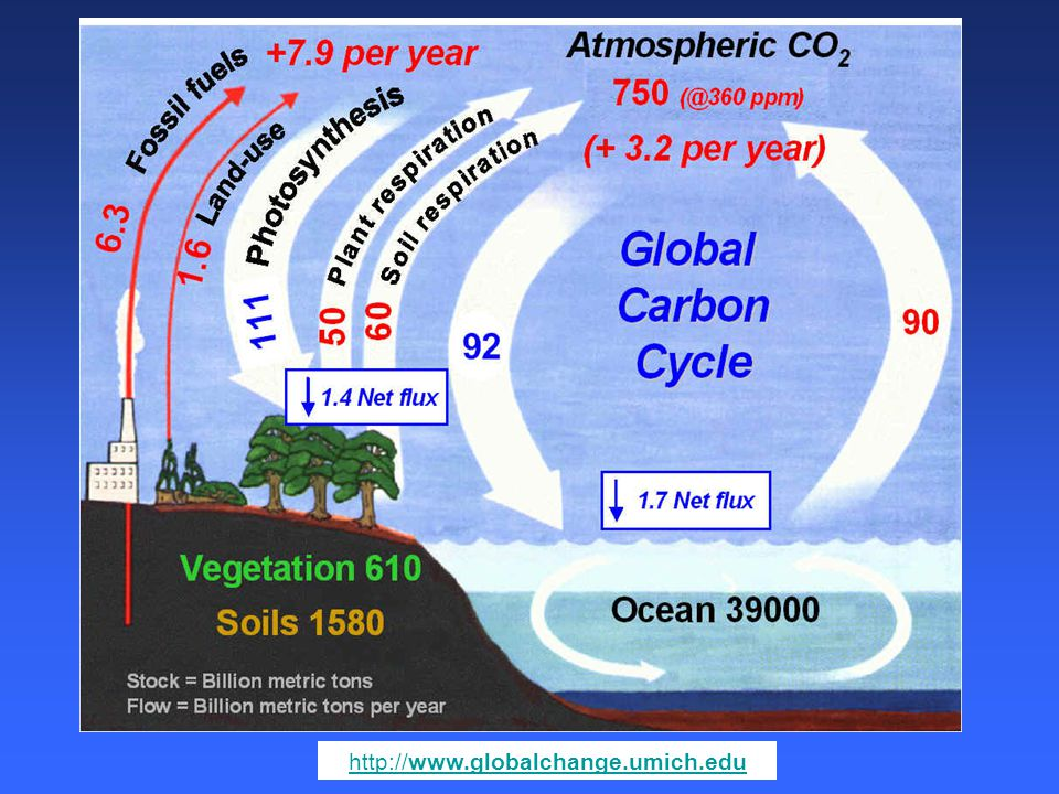 http://www.globalchange.umich.edu