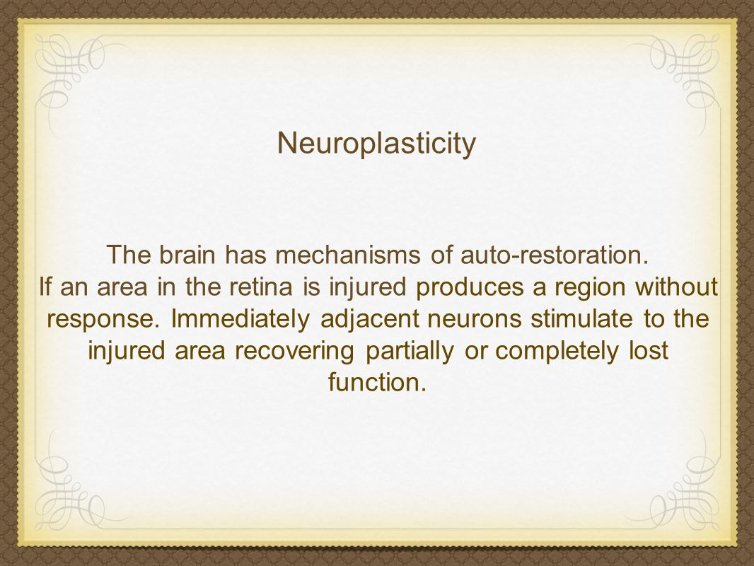 Neuroplasticity (or cortical re-mapping) is the changing of neurons, organization of their networks and their function via new experiences.