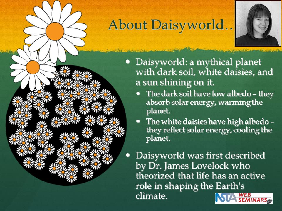 About Daisyworld… Daisyworld: a mythical planet with dark soil, white daisies, and a sun shining on it.