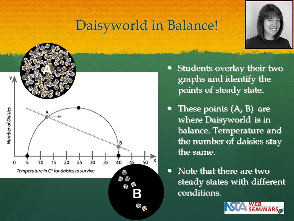 Daisyworld in Balance. Students overlay their two graphs and identify the points of steady state.