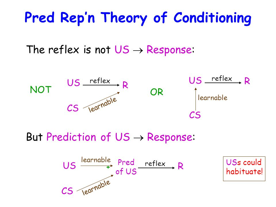 Pred Rep'n Theory of Conditioning The reflex is not US  Response: US R reflex CS learnable NOT OR US R reflex CS learnable But Prediction of US  Response: Pred of US R reflex CS learnable US learnable + USs could habituate!
