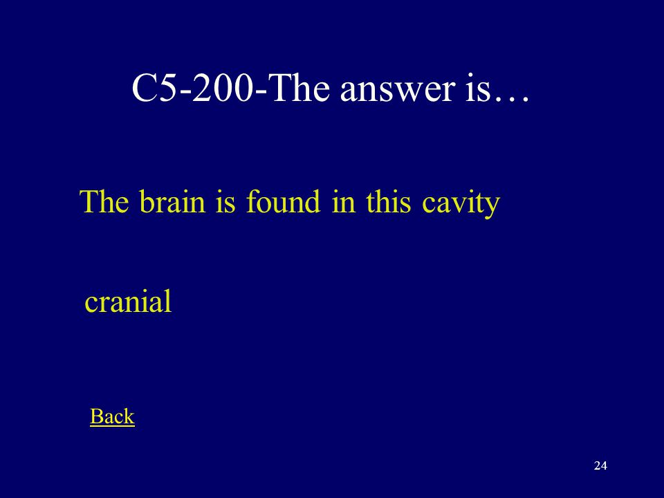 23 C5-100-The answer is… This refers to the organ that decides what to do in response to a stimulus Control center Back